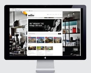 Adio Properties Website